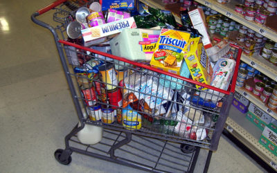 Your Grocery Cart and Your Portfolio